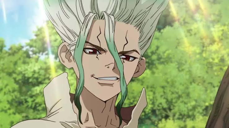 Spoilers and Raw For Dr Stone Chapter 176 Release date (Delayed) and much more.